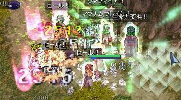 16_20090121113536.jpg