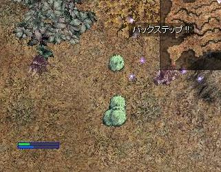 20_20090117182003.jpg