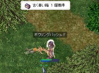 3_20090226031113.jpg