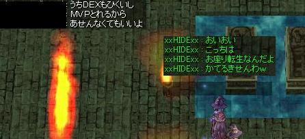 8_20081208181853.jpg