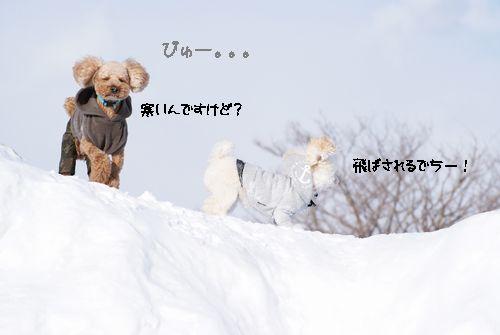 寒いんですけど