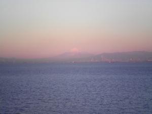 2011013103.jpg