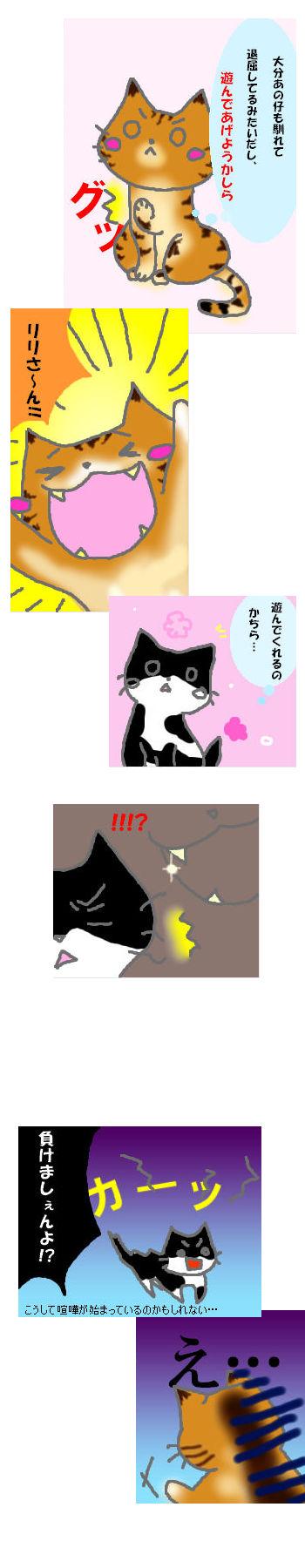 リリ姫の肉球00