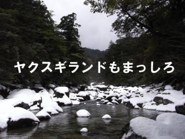 雪のランド