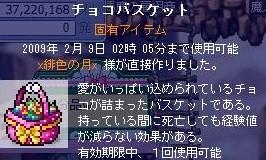 Maple0041.jpg