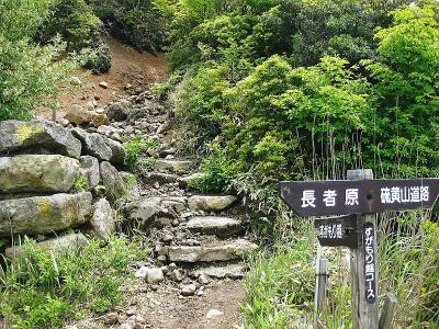 20110608九重 (3)