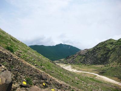 20110608九重 (10)