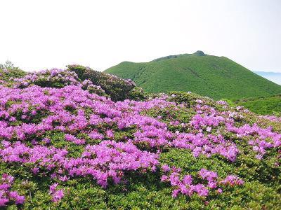 20110608九重 (24)