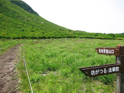 20110608九重 (29)