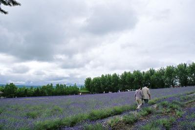 北海道その3 (5)