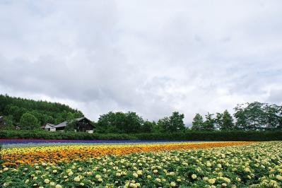 北海道その3 (4)