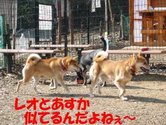 bP1050092.jpg