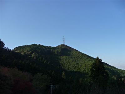 2008-11-23-157.jpg