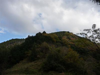 2008-11-26-114.jpg