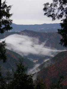 2008-12-17-013.jpg