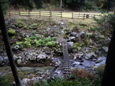 2008-12-17-077.jpg