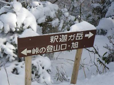 2009-01-04-018.jpg