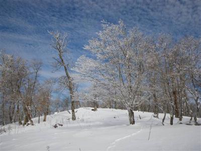 2009-01-04-024.jpg