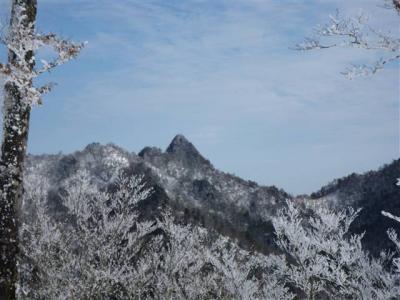 2009-01-04-031.jpg