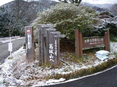 2009-01-11-003.jpg