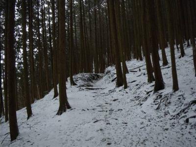2009-01-11-021.jpg