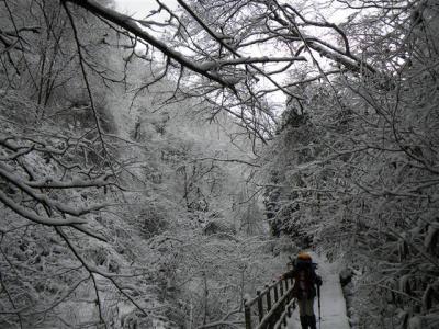 2009-01-11-026.jpg