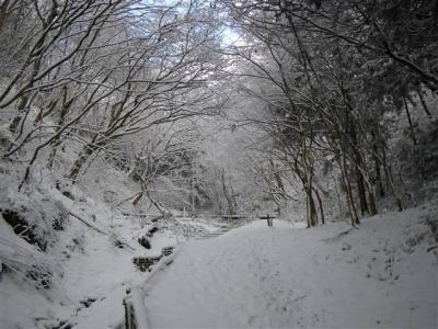2009-01-11-030.jpg