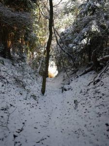 2009-01-11-071.jpg