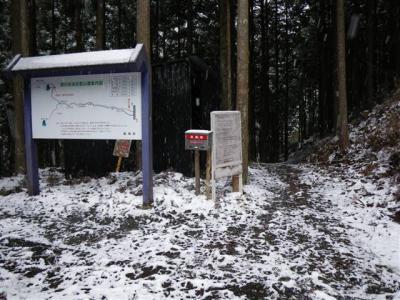 2009-01-12-001.jpg