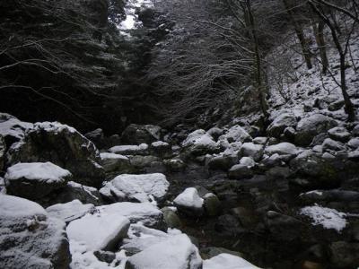 2009-01-12-008.jpg