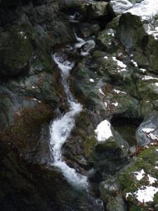2009-01-12-012.jpg