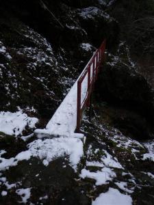 2009-01-12-015.jpg