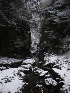 2009-01-12-018.jpg