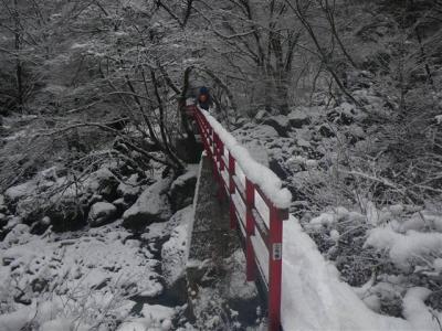 2009-01-12-021.jpg