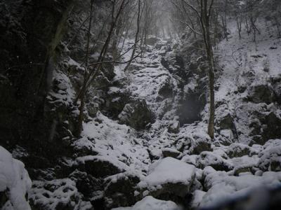 2009-01-12-040.jpg