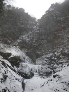 2009-01-12-076.jpg