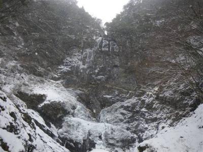 2009-01-12-091.jpg
