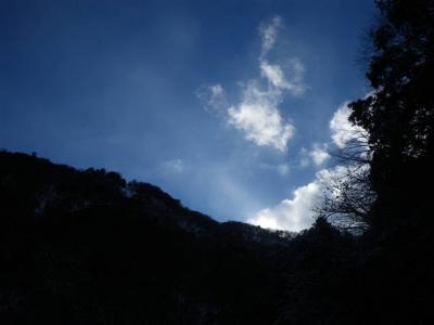 2009-01-12-134.jpg