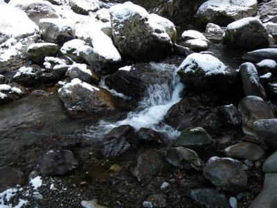 2009-01-12-137.jpg