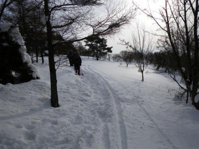 2009-01-18-009.jpg