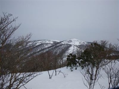 2009-01-18-030.jpg