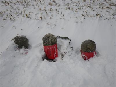 2009-01-18-057.jpg