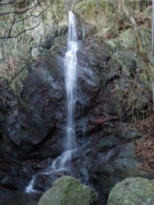 2009-01-25-013.jpg