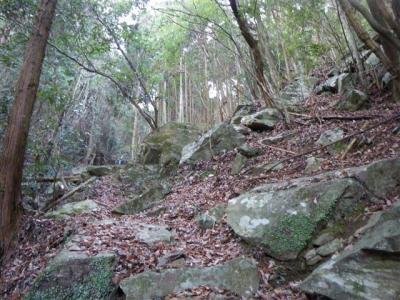 2009-01-25-017.jpg