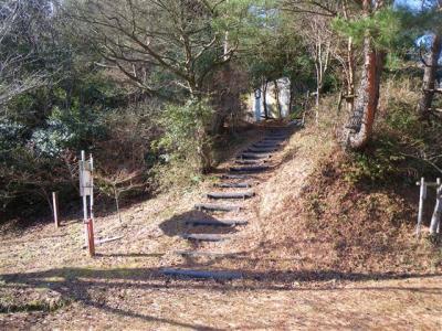 2009-01-25-044.jpg