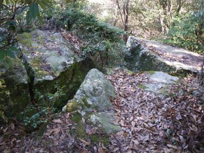 2009-01-25-062.jpg