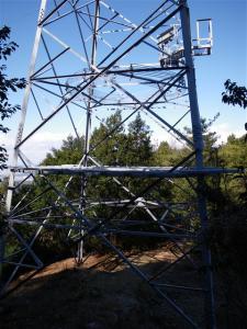 2009-01-25-084.jpg