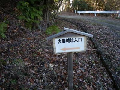 2009-01-25-085.jpg