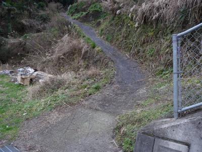 2009-02-01-003.jpg