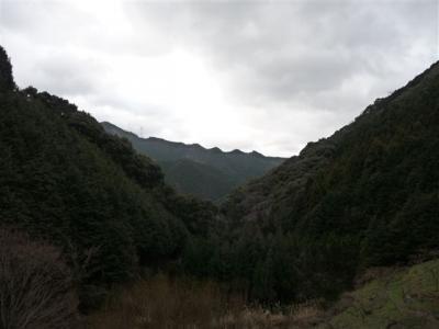 2009-02-01-010.jpg